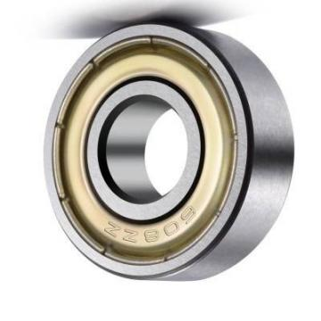 C&U SKF, NSK, NTN, Koyo NACHI China Factory P5 Quality Zz, 2RS, Rz, Open, 608zz 6703 6704 6705 6706 6707 6708 6709 6710 6711 6900 Deep Groove Ball Bearing