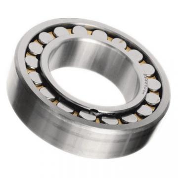 Chorme Steel Spherical Roller Bearing (22220)